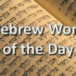 Cantor Wendi's Hebrew Word Of The Day